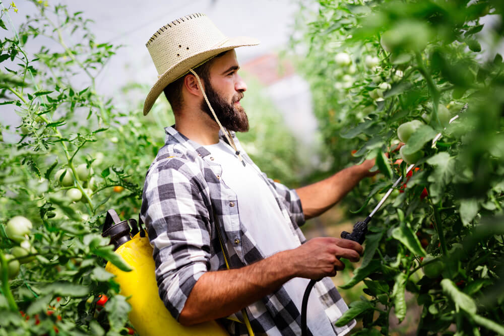 control de plagas en la agricultura